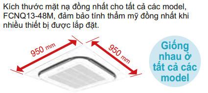 mat-na-vuong-dong-nhat-950-x-950